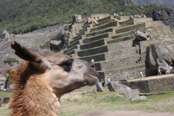 Peru-0381