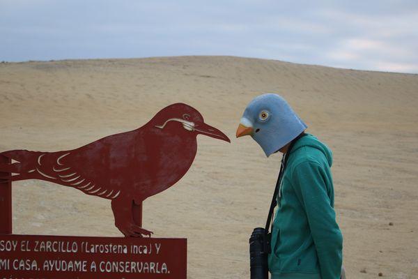 Peru-0641